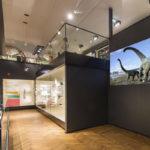museos bibliotecas galerias publiscreen carteleria digital bajo coste salamanca